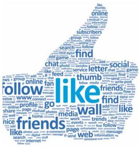 social-media-insights